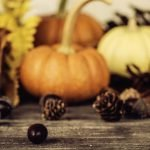 Tips to Survive (and Even Enjoy!) Thanksgiving During Divorce